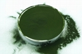 Chlorella Powder Pack High Protein Chlorella Powder In Bulk
