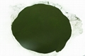 Food Grade Bio Chlorella Powder Broken