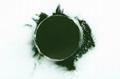 Algae Bio Chlorella powder  2