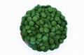Ordinary Chlorella tablet 2
