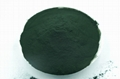 Algae spirulina powder in bulk