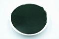 Algae spirulina powder in bulk