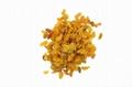 2020 best quality dried golden raisins