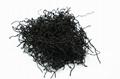 2020 Seaweed Sargassum Hijiki