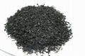 Sargassum dried hijiki seaweed