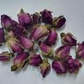 Rosebud Flower Tea Rose Dried Tea R