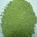 Organic Oat Grass Powder Best Price Bulk