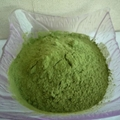 Hot Sale Natural Oat Grass Powder