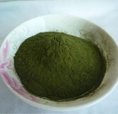 Wheat Grass Juice Powder For Food Additive Organic Wheat Grass Powder