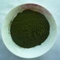 100% Purity Organic vegetable powder barley grass powder