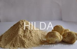 Agaricus blazei powder/extract