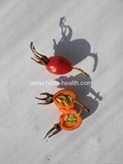 Rosehip dried fruits