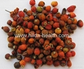 Rosehip dried fruits 3