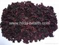 Black currant peel (hull,shell)