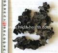 Black fungus 2