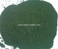 Chlorella (powder,