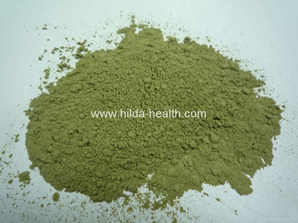 2019 seaweed Kelp powder laminaria powder