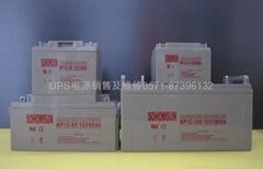 供应SOHOWSUN蓄电池