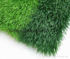 Good Drainage Soccer Grass