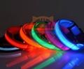 2.5cm LED Dog Nylon Collar Safety
