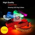 Night Safety Warning Light LED Dog Collar-Usb Charging 2