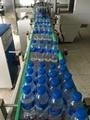 瓶裝純淨水生產線
