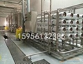 CQF-4000型瓶裝山泉水生