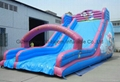 2014 newest inflatable slides 5