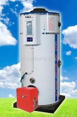 上海大強鍋爐廠家直銷環保節能燃氣熱水鍋爐