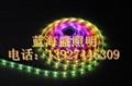 LED幻彩软光条 2