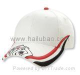 promotional cap/lanyard/CD bag