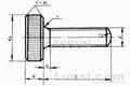 滾花平頭螺釘 GB835 -1988 2