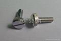 皇冠組合螺釘碳鋼鍍鎳或者不鏽鋼 4