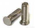 埋头压铆螺钉|埋头压铆螺钉厂家|埋头压铆螺钉图片资料