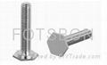 压铆螺钉FH FHS 压铆螺钉厂家 压铆螺钉现货 图片 资料 3