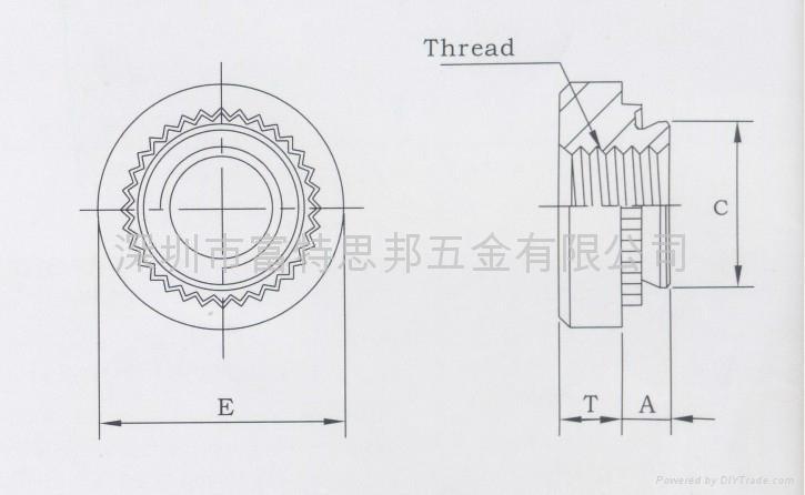 SP-M6-1不鏽鐵真空熱處理壓鉚螺母,SUS416 2