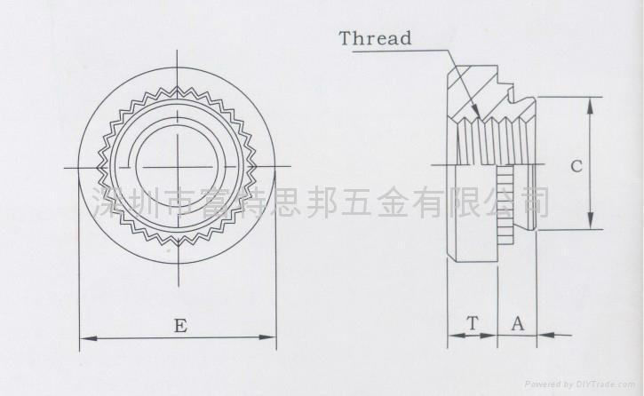 不鏽鋼壓鉚螺母CLS-632-1 2