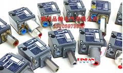 XPEA110 工业控制产品 9012GAW1 9013FSG2