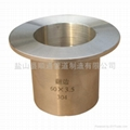 Stanless Steel Stub End