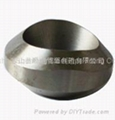 Alloy and carbon steel forged fittings