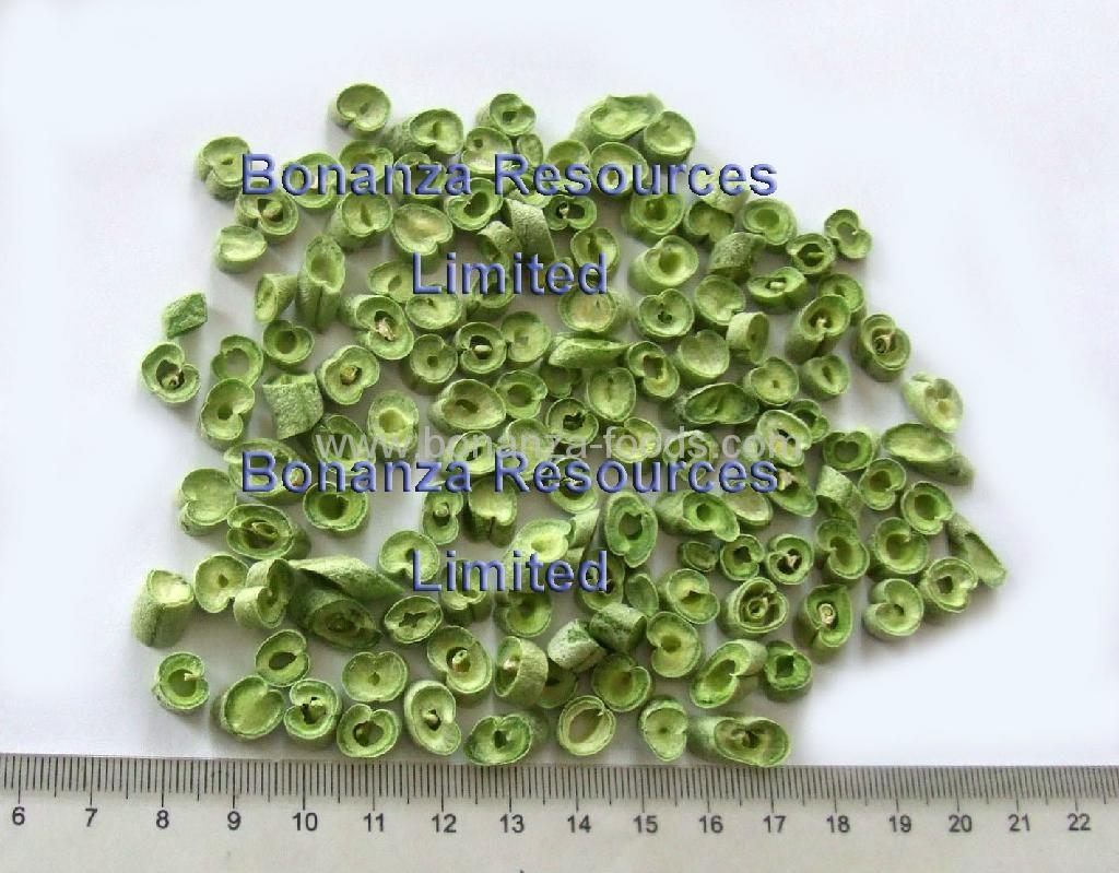 Lyophilishd Freeze Dried Green Bean 1