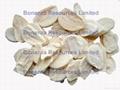 Freeze Dried Garlic 1