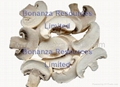 Golden Supplier dried vegetables price Freeze Dried Mushroom 1