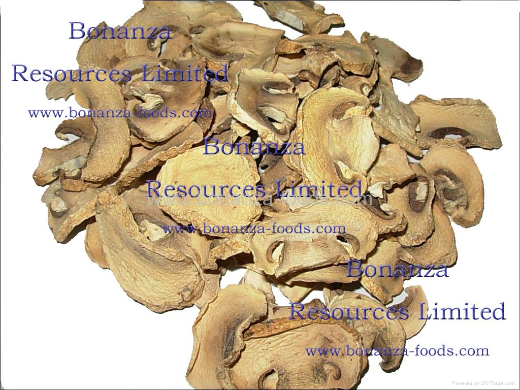 Golden Supplier dried vegetables price Freeze Dried Mushroom 3