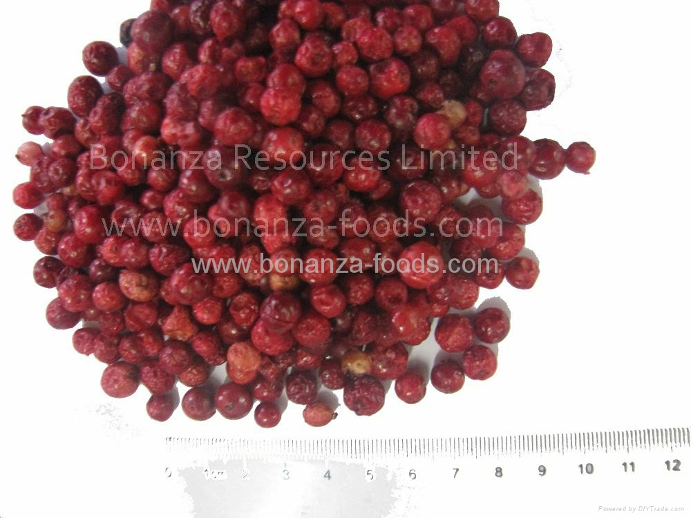 Freeze Dried Lingonberry healthy foods 1