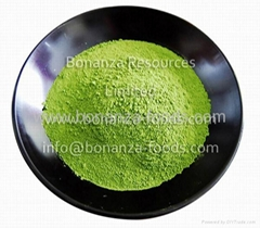 Healthy drink ingredient Green Tea Powder Maccha