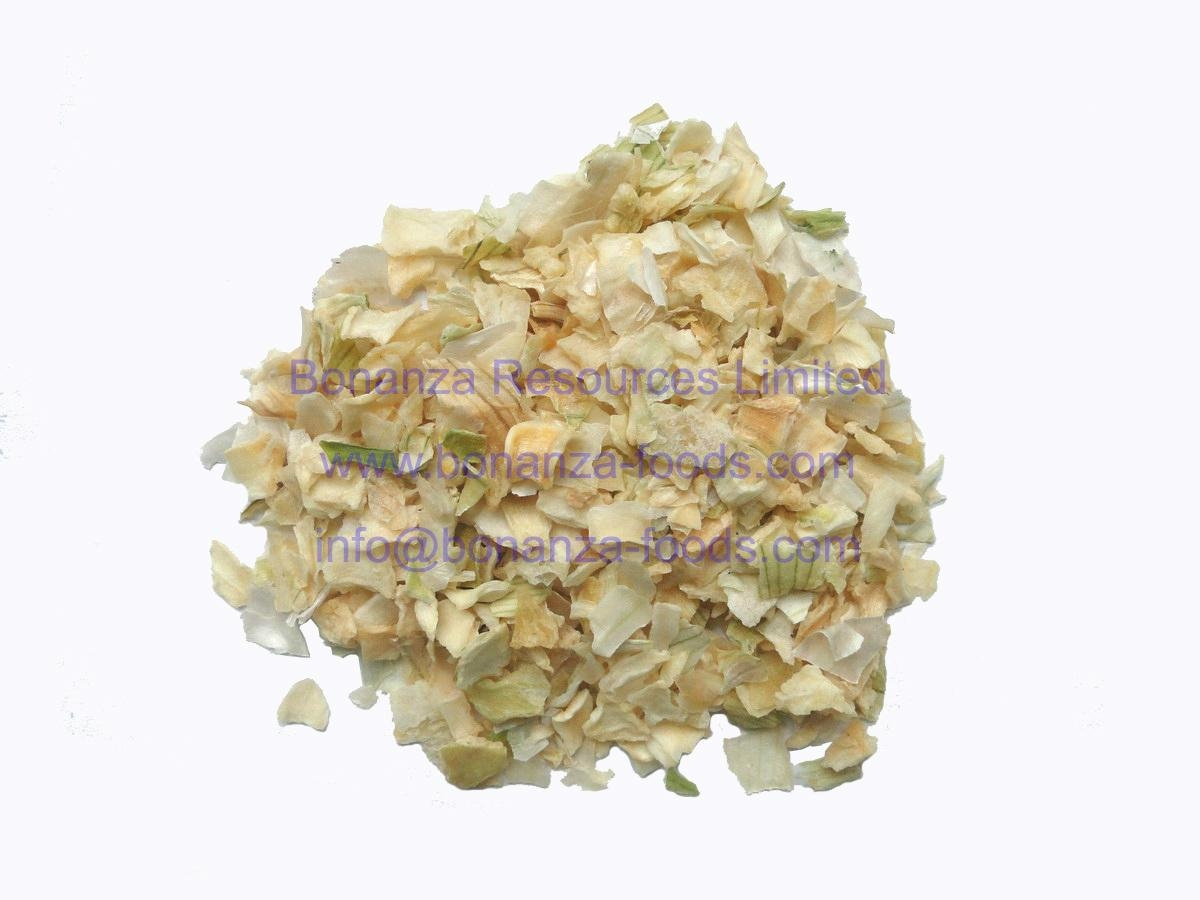 Dehydrated White Onion 1