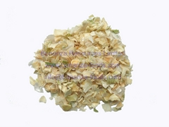 Healthy Dehydrated White Onion