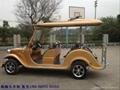 新疆觀光遊覽車 2
