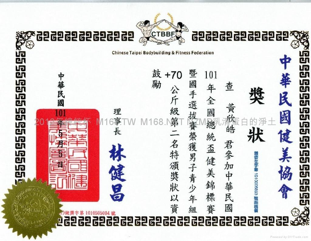 2012年總統杯獎狀